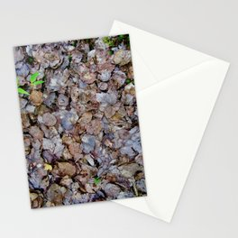 Last Years Fallen Foliage Stationery Cards