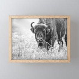 under observation - black'n white Framed Mini Art Print