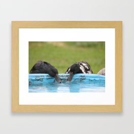 At The Watering Hole Framed Art Print