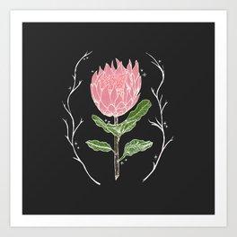Heather's Protea Art Print