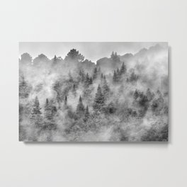 Pinsapos forest. Foggy morning. Endemic trees. Metal Print