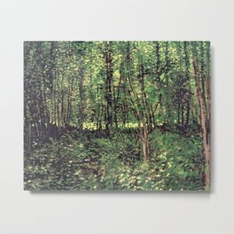 Trees and Undergrowth Metal Print