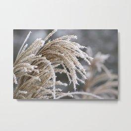 Winter Fairyland 2 Metal Print
