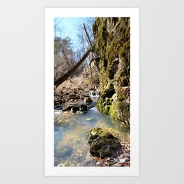 Alone in Secret Hollow with the Caves, Cascades, and Critters - Peering into the Cold, Clear Spring Art Print