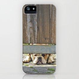 Waiting Bulldog iPhone Case