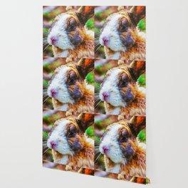 Rabbit in a wood Wallpaper