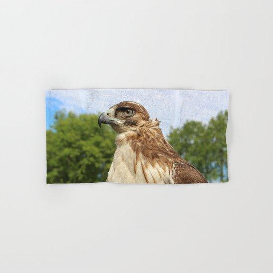 Red Tailed Hawk Hand & Bath Towel