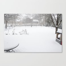 the backyard Canvas Print