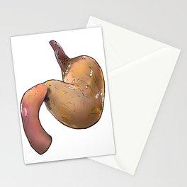 Stomach Stationery Cards