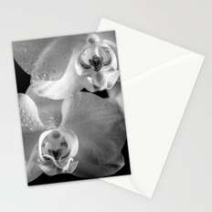 Orchid with Morning Dew (Orchidee mit Morgentau) Stationery Cards