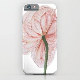 Pink Anthurium iPhone Case