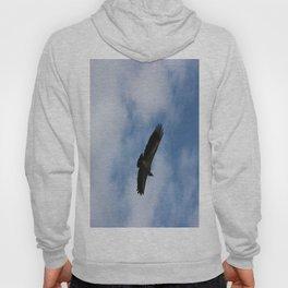 Vulture flight Hoody