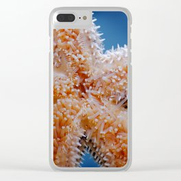 Common starfish underside Clear iPhone Case