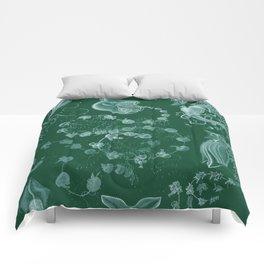 Ernst Haeckel Siphonophorae Hydrozoan Comforters