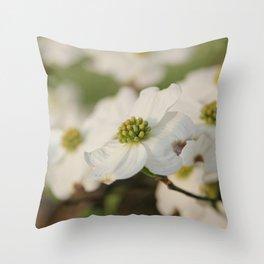 Dogwood Blossoms Throw Pillow
