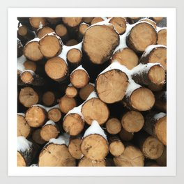 Firewood of the Future Art Print