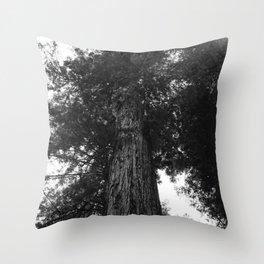 Sequoia National Park III Throw Pillow