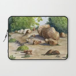 A Walk In the Arboretum Laptop Sleeve