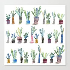 Plants in pots Canvas Print