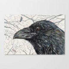 Crow Raven Canvas Print