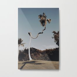 twisted palm tree / kailua-kana, hawaii Metal Print