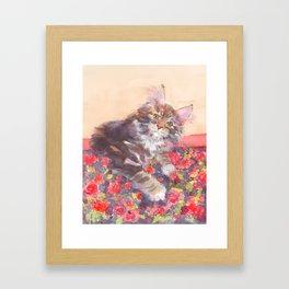 Kitten's Bed of Roses Framed Art Print