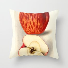 Vintage Illustration of a Sliced Apple Throw Pillow