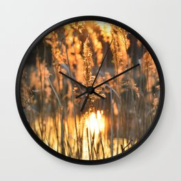 Light of rising sun in the grass makes as if the grasses are in fire Wall Clock