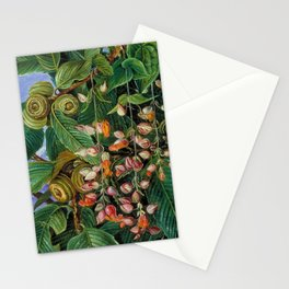 A Dar-jeeling Oak Festooned with Flowering Climbers still life painting Stationery Cards
