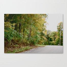 Road Bend Canvas Print