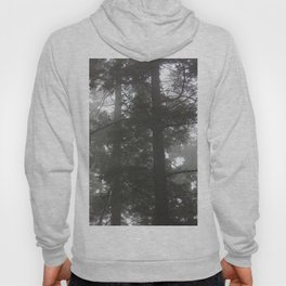 Foggy trees Hoody
