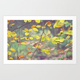 Before They Fall Art Print