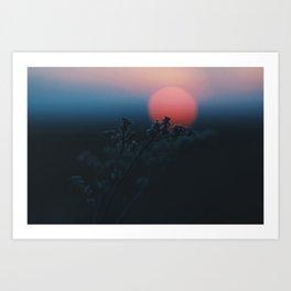 Resting Sun Art Print