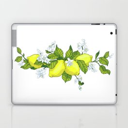 Vertical line of a slice and half of citrus fruit in juicy tones. Graphic design in conceptual e Laptop & iPad Skin