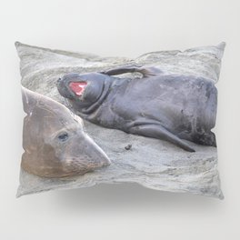 Elephant Seal Mother and Baby Pillow Sham