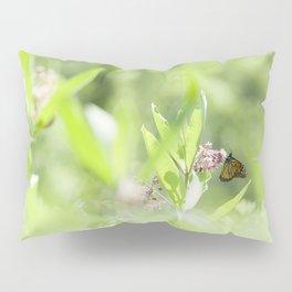 Monarch Serenity Pillow Sham