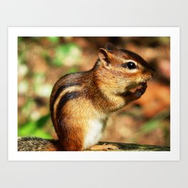 Just chippy! Art Print