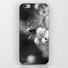 Flowering Almond in Black and White iPhone & iPod Skin