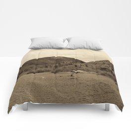Crawford Notch-Sepia Comforters