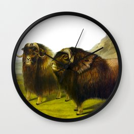Musk Ox Wall Clock