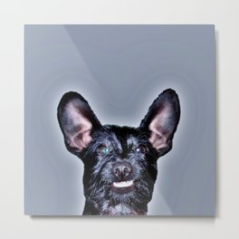 Funny Dog , Good Humor Dog Metal Print