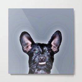 Funny Dog , Good Humor Dog Metal Print