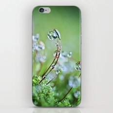 When you hear the fairies sing, you'll know you found my secret hiding place... iPhone & iPod Skin