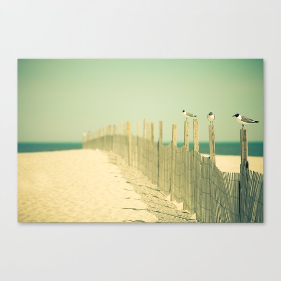 Into the Distance Canvas Print