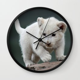 White lion cub Wall Clock