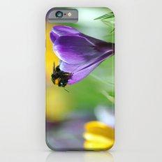Bumble Bee on Crocus Slim Case iPhone 6s