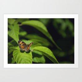 Tawny by Althéa Photo Art Print