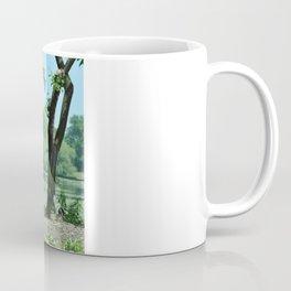 Deluxe Ducks #16 Coffee Mug