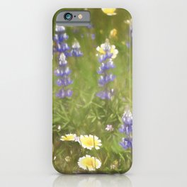 Colors 163 iPhone Case