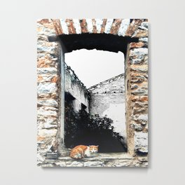 Cat in the Abandoned Home Window Metal Print